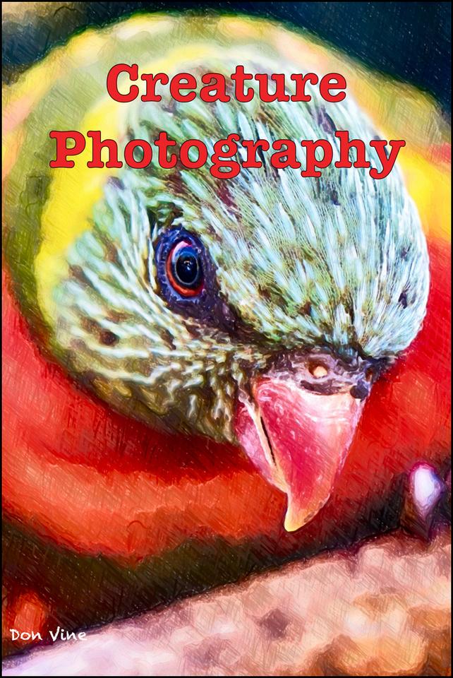 dv_CreaturePhotography-ZPBTit__