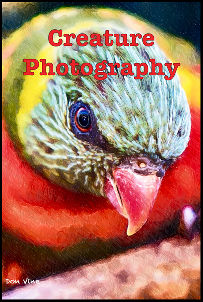 dv_dv_CreaturePhotography-ZPBTit____
