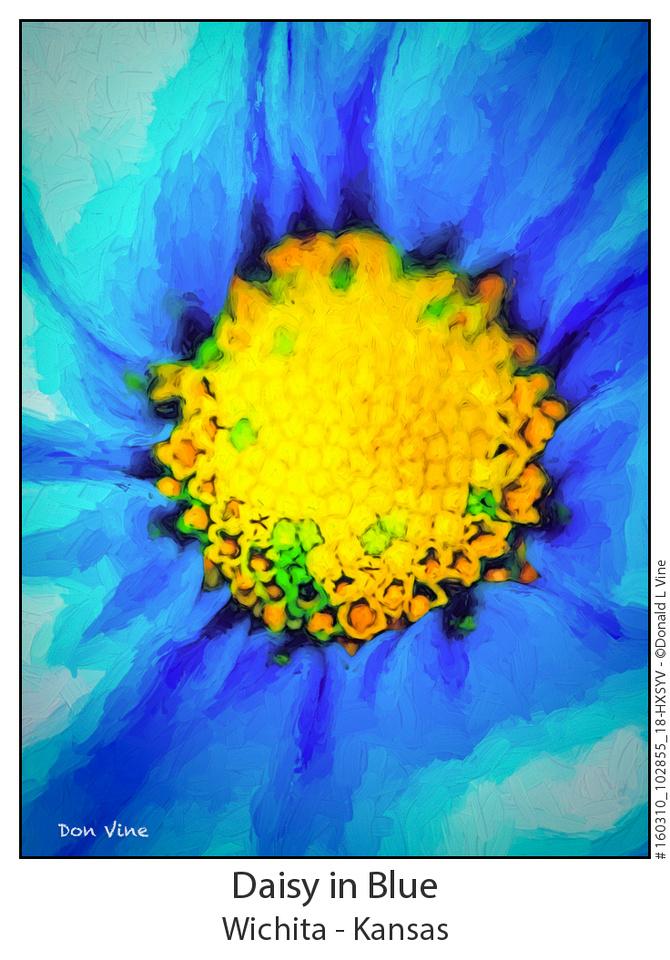 Daisy in Blue_160310_102855_18-HXSYV